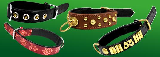 Läderhalsband för hund