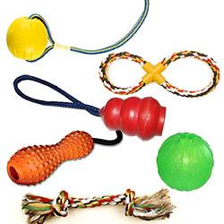 Leksaker för hund